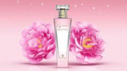 GRACE LA ROSE SUBLIME – HINODE – 100 ml